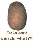 potato.jpg (5591 bytes)